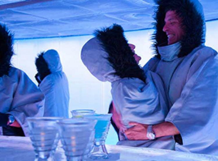Norwegian Cruise Line Norwegian Epic Interior SVEDKA Ice Bar.jpg