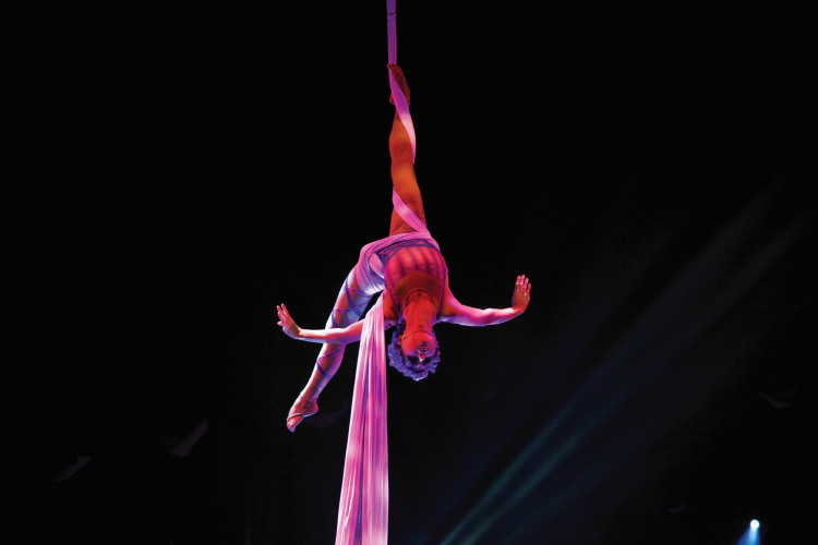 celebrity cruises theatre performance 1.jpg